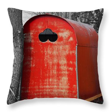 The Melt Throw Pillow by Barbara McMahon