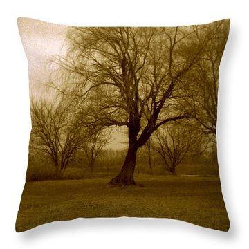 The Midnight Sky Throw Pillow