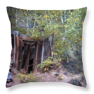 The Mine Shaft Throw Pillow by Lana Trussell