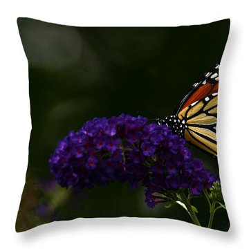 The Monarch Rules Throw Pillow