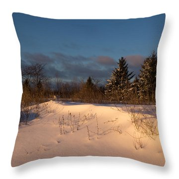 The Morning After The Snowstorm Throw Pillow by Georgia Mizuleva