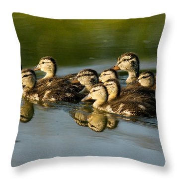 The Morning Rush Throw Pillow by Robert Frederick