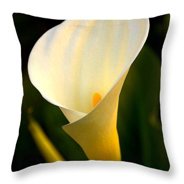Throw Pillow featuring the photograph The Morning Trumpets by Clayton Bruster