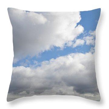 The Mount Vernon Landscape Throw Pillow