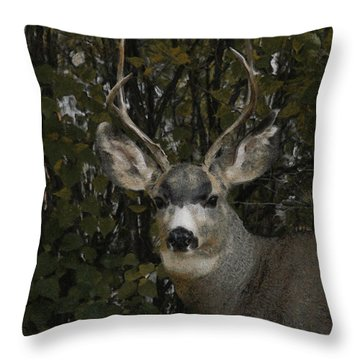The Mulie Throw Pillow