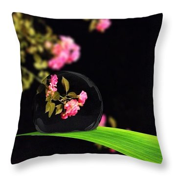 The Music Of The Night Throw Pillow