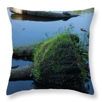 The Myakka River In Myakka River State Park 3 Throw Pillow
