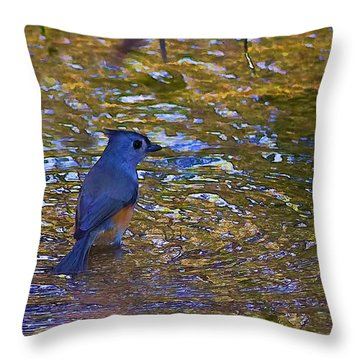 Throw Pillow featuring the photograph The Naiad by Gary Holmes