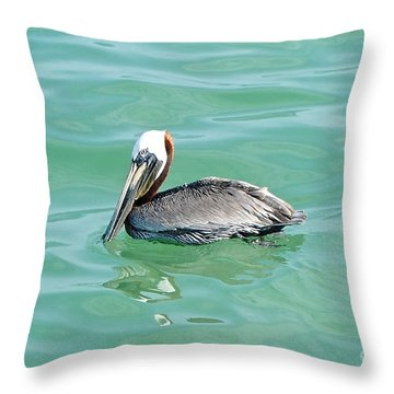 The Napping Pelican Throw Pillow by Margie Amberge