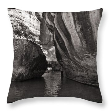 The Narrows II Throw Pillow