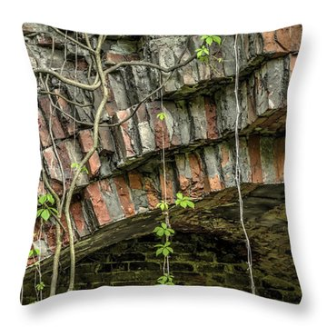 The Nature Of Time Equals Time For The Nature Throw Pillow