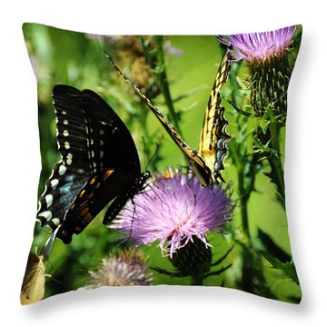 The Nectar Seekers Throw Pillow by Rebecca Sherman