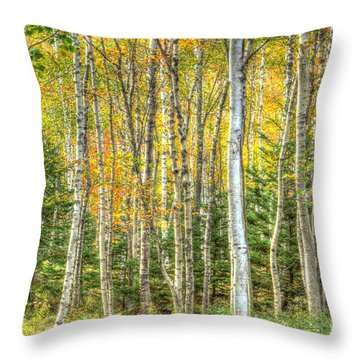 Throw Pillow featuring the photograph The North Woods by Wanda Krack