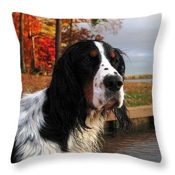 Waterdog Throw Pillows