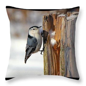 The Nut Cracker Throw Pillow by Davandra Cribbie
