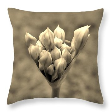 The Offering Throw Pillow by Robert Geary