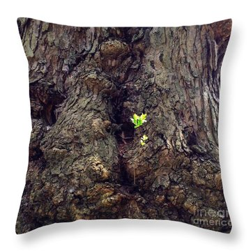 Throw Pillow featuring the photograph The Old And The New by Becky Lupe