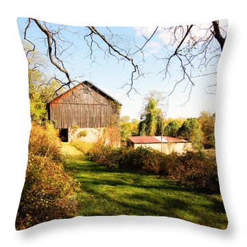 Throw Pillow featuring the photograph The Old Barn by Trina  Ansel