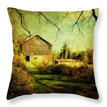 The Old Barn With Texture Throw Pillow