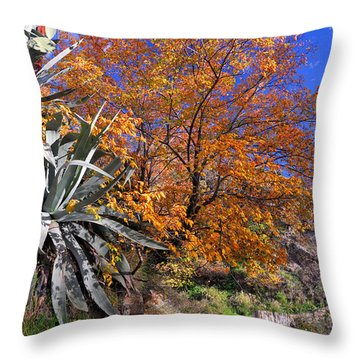 The Old Bridge In Automn Throw Pillow by Guido Montanes Castillo
