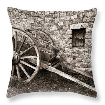 The Old Cart Throw Pillow