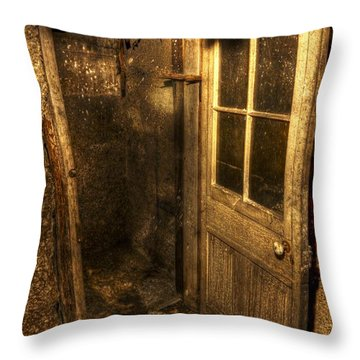 The Old Cellar Door Throw Pillow by Dan Stone