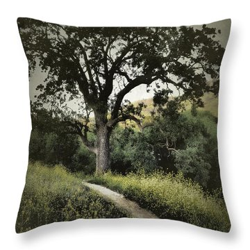 The Old Chumash Trail Throw Pillow