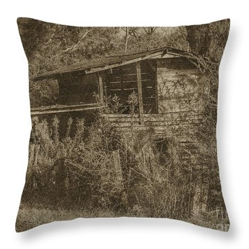 The Old Crib Throw Pillow