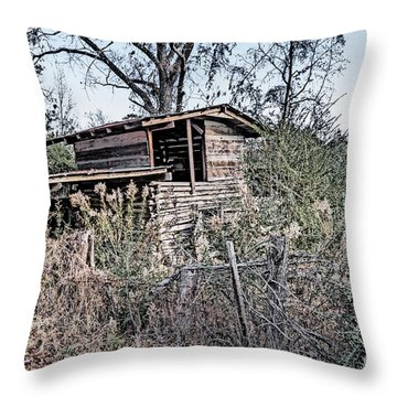 The Old Crib Two Throw Pillow