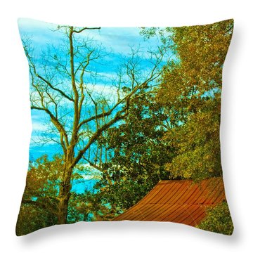 The Old Homestead 2 Throw Pillow
