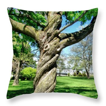 The Old Lady Of The Green Throw Pillow by Michelle Calkins