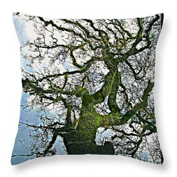 The Old Mossy Oak Tree Against Cloudy Sky Throw Pillow