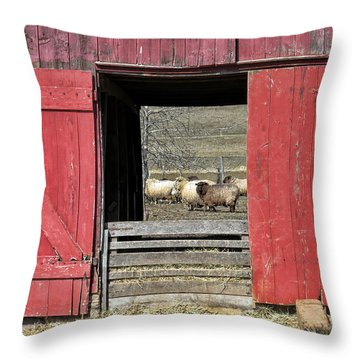 The Old Sheep Barn Throw Pillow by Olivier Le Queinec