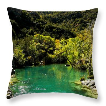 Throw Pillow featuring the photograph The Old Swimmin' Hole by Lin Haring