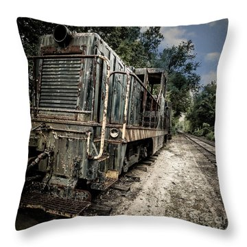 Throw Pillow featuring the photograph The Old Workhorse by Edward Fielding