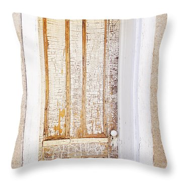 The One Hundred Year Old Door Throw Pillow by Elvira Butler