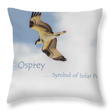 Throw Pillow featuring the photograph The Osprey by DigiArt Diaries by Vicky B Fuller