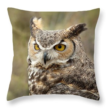 Throw Pillow featuring the photograph The Owl by Lucinda Walter