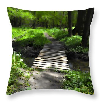 The Painted Forest From The Series The Imprint Of Man In Nature Throw Pillow