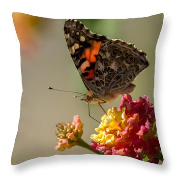 The Painted Lady Throw Pillow by Ernie Echols