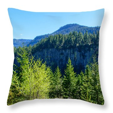 The Palisades Throw Pillow by Tikvah's Hope