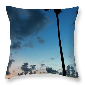 The Palm Majestic Sunset Beach Tarpon Springs Florida Throw Pillow
