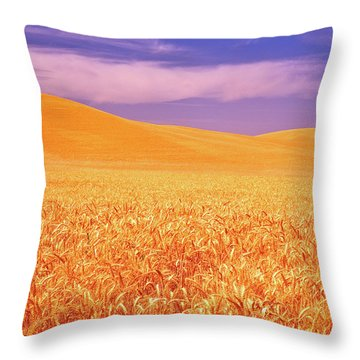 The Palouse Steptoe Butte Throw Pillow
