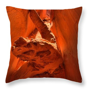 The Paria Dragon Throw Pillow