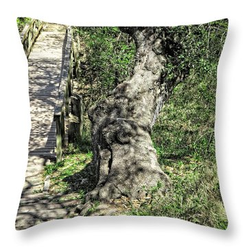 the Passageway Throw Pillow by Ella Kaye Dickey