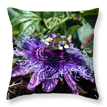 The Passion Flower Throw Pillow by Kim Pate
