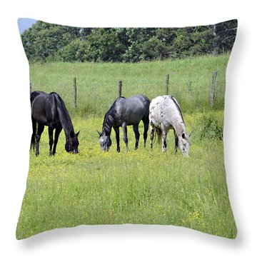 The Pasture Throw Pillow by Susan Leggett