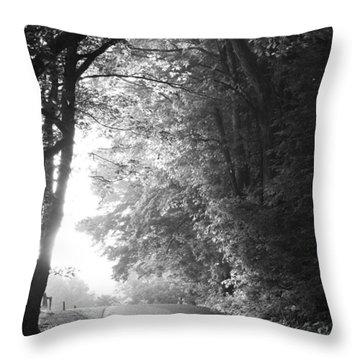 White Mountain National Forest Throw Pillows