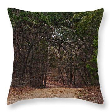 The Path In The Woods Throw Pillow by Lisa Holmgreen