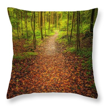The Path Throw Pillow by Maciej Markiewicz